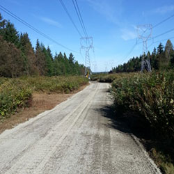 BPA Access Roads - transmission lines