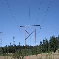 Alvey-Fairview No 1 Transmission Lines - wood poles