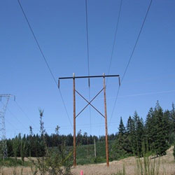 Alvey-Fairview No 1 Transmission Lines - wood poles