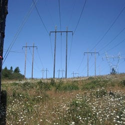 Bandon-Rogue No 1 - transmission lines and wood poles