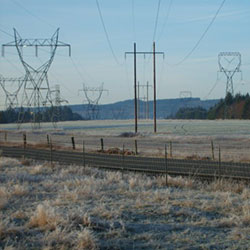 Chehalis-Raymond No 1 - power poles, transmission line