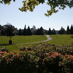 Fisher's Landing Planned Community - park