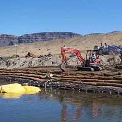 Wanapum Shoreline Stabilization - plantings in process