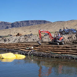Wanapum Shoreline Stabilization - plantings in process