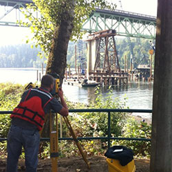SELLWOOD BRIDGE REPLACEMENT