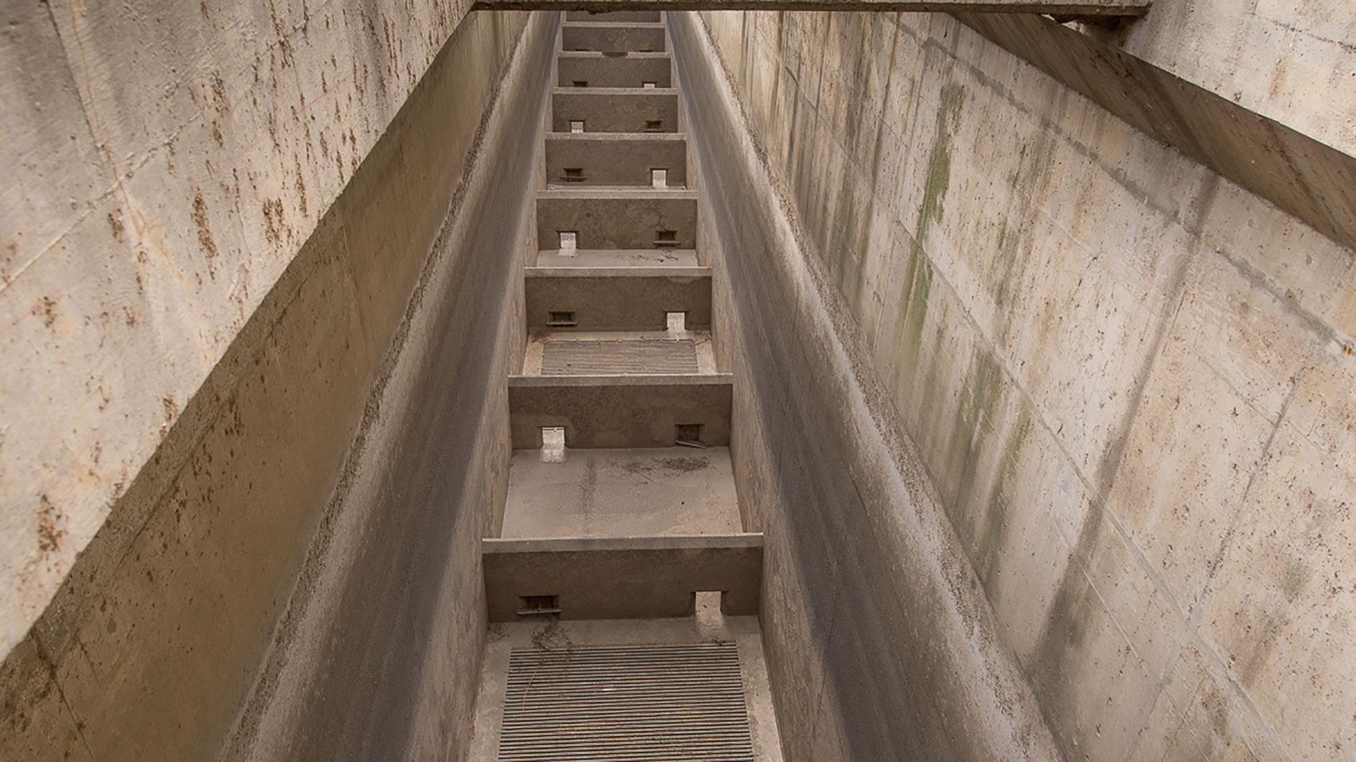 Volitional Fish Passage - ladder